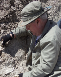 Lew carefully digging out a rhino jaw from the Dickinson dig