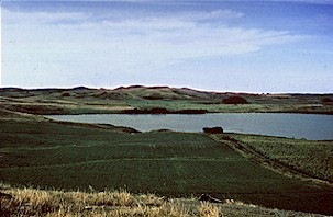 Figure 6. View over a lake, toward the Binford Hills in Griggs County. The lake is contained in the hole that formed when the Binford Hills were thrust by the glacier into their present location.