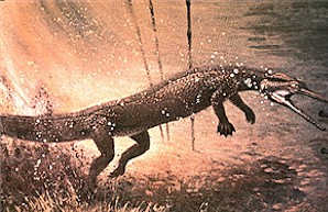 Figure 14. Life restoration of Champsosaurus lunging off the bottom of a pond after a fish. Painting by Jerome Connolly, The Science Museum of Minnesota, St. Paul.