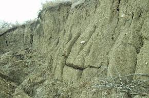 Till, glacially derived sediment consisting of a mixture of sand, silt, clay, and cobbles or boulders