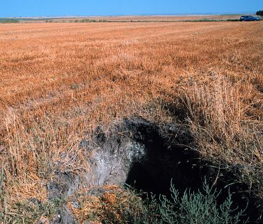 Left: The northwest edge of the northern hole contains a small  									cave or den that extends 7 feet below the surface.