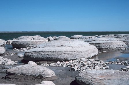 Concretions in the Sentinel Butte Formation, Lake Sakakawea.